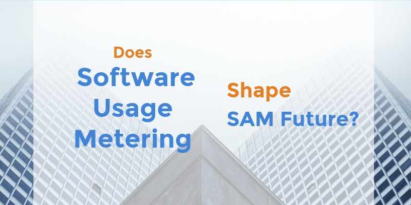 Does software usage shape SAM?